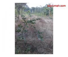 DIJUAL CEPAT... Tanah Murah Cocok Untuk Perumahan Di JATINOM