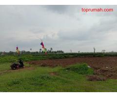 Tanah Kavling Di Sumberpasir Pakis Malang Dekat Exit Tol
