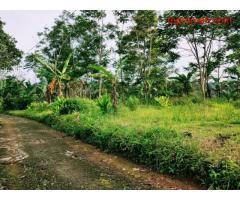 Dijual tanah cocok buat Villa Kemuning, Ngargoyoso, Karanganyar