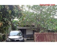 Dijual BU Rumah & Kebun Cibentang, Ciseeng, Parung LT. 363 LB. 50