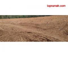 Tanah kavlingan harga murah meriah lokasi belakang alamsyah BANK BRI talang ubi timur