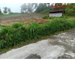 Tanah 2400m² Datar Kemuning Ngargoyoso Karanganyar