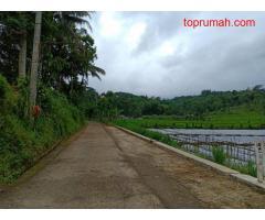 Tanah 2970m² View Hamparan Sawah Ngargoyoso Karanganyar