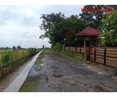Tanah Idaman 1500m² Startegis Dibangun Vila Karangpandan Karanganyar
