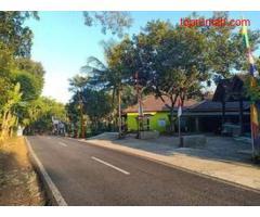 Tanah Strategis Buka Usaha Tepi Jl. Batujamus Kerjo Karanganyar