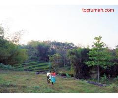 Dijual Tanah Taman Dayu Cluster Langit Biru Pasuruan