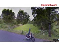 Tanah Istimewa Pinggir Jl Palagan Yogyakarta