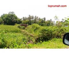 Tanah Luas Di Area Persawahan Medari Dekat Pabrik Kain Primissima