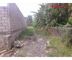 Tanah luas 500 m2 cocok di bangun villa