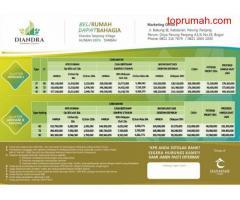 Dijual rumah 100% syariah diandra serpong village