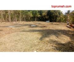 Panjatan Village investasi paling untung