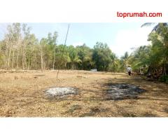 Ingin Diskon 25%, Mulailah Beli Tanah Di Panjatan Village