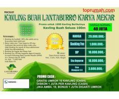 Beli Tanah Kebun Buah Bonus Bibit Buah Durian