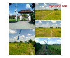 Jual Tanah Kavling Untuk Investasi