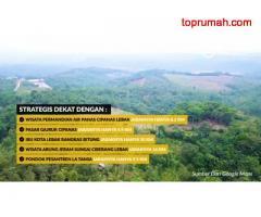Investasi Kebun Produktif di Cirebon, Bogor & Cipanas Double Untung