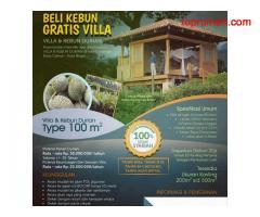 BELI KEBUN GRATIS VILLA