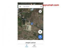 Tanah Dijual di Pamotan Rembang, Lokasi Sangat Strategis